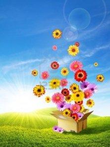 8923398-fiori-colorati-che-emergono-da-una-scatola-di-cartone-consegna-primavera-sulle-colline-verdi
